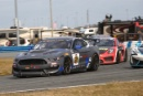 Scott Maxwell, Cole Custer, Ty Majeski, Multimatic Motorsports, Ford Mustang GT4